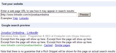 Rich Snippets en LinkedIn
